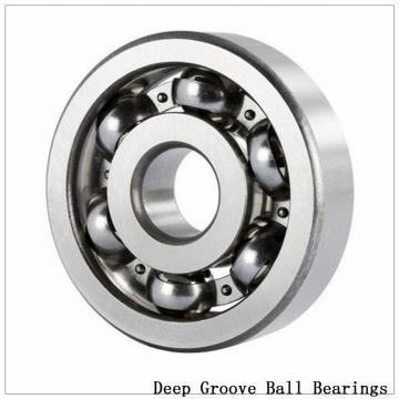 60/1060F1 Deep groove ball bearings